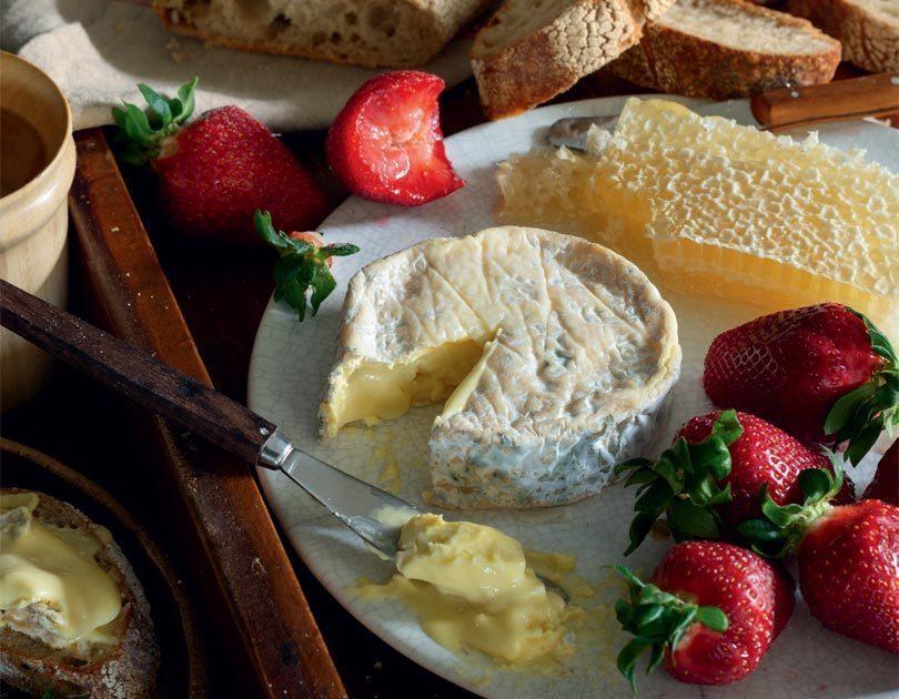 CUISINE CHEESE WATCH / The Harnett – Kaikoura Cheese Company