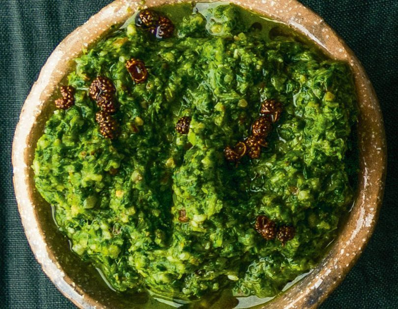 NUMBING & SPICY SICHUAN PARSLEY PESTO