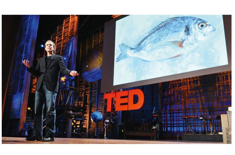 HOW I FELL IN LOVE WITH A FISH – DAN BARBER